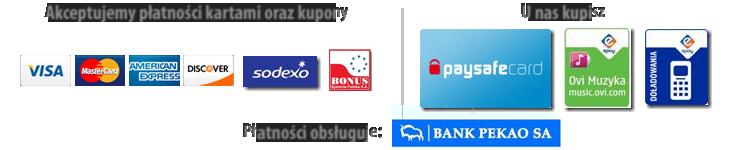 karty płatnicze i płatności